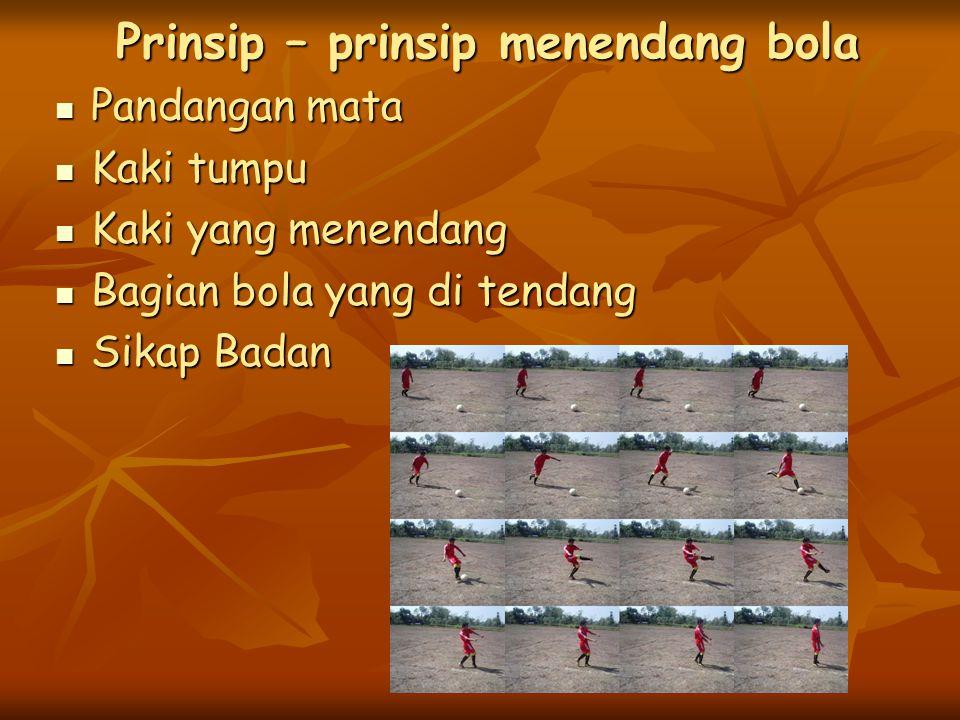 Prinsip – prinsip menendang bola