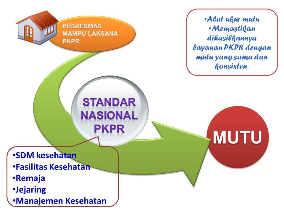 MUTU STANDAR NASIONAL PKPR SDM kesehatan Fasilitas Kesehatan Remaja