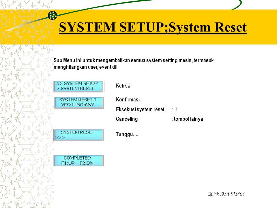 SYSTEM SETUP;System Reset