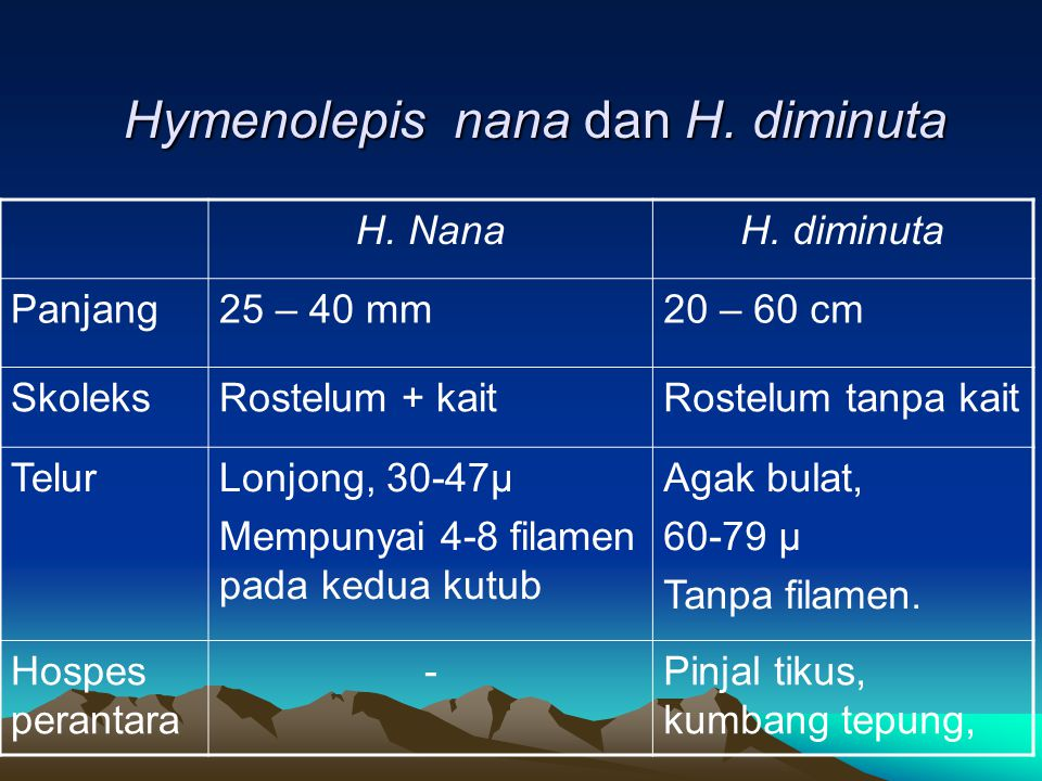 Hymenolepis nana dan H. diminuta