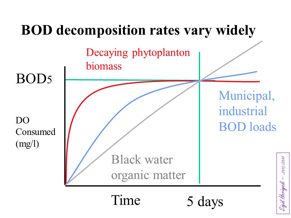 BOD decomposition rates vary widely
