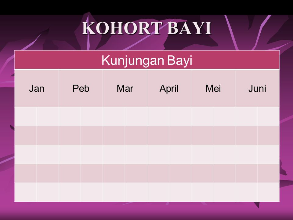 KOHORT BAYI Kunjungan Bayi Jan Peb Mar April Mei Juni