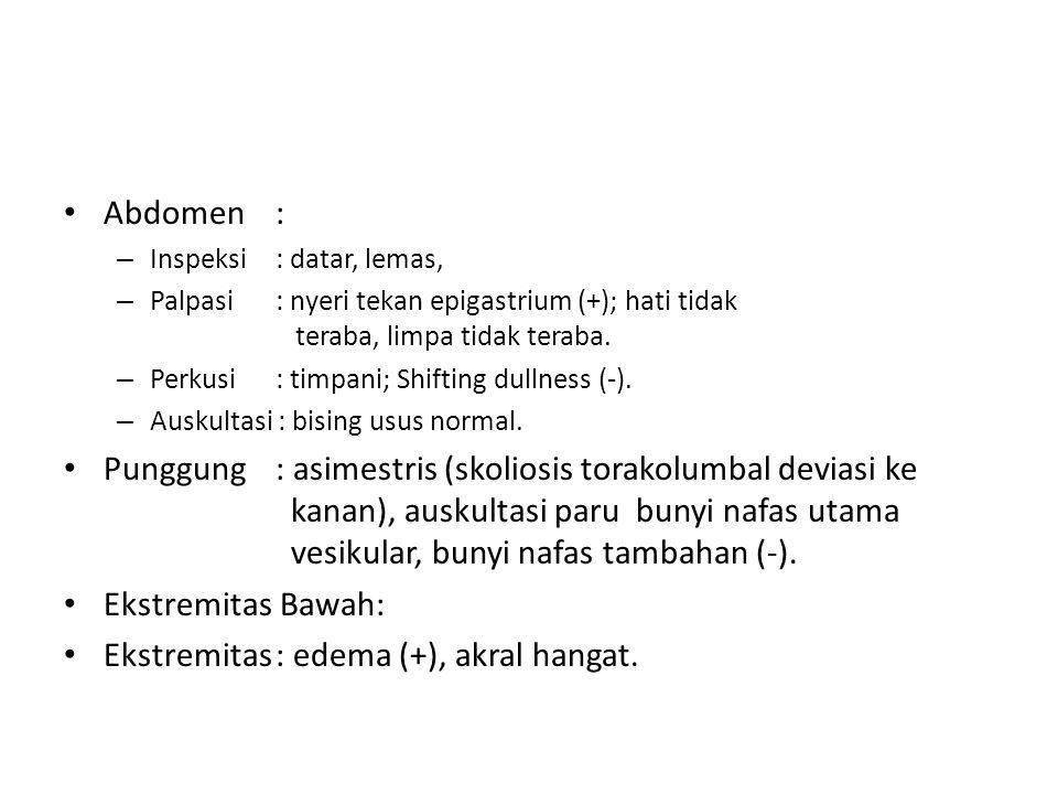 Ekstremitas : edema (+), akral hangat.