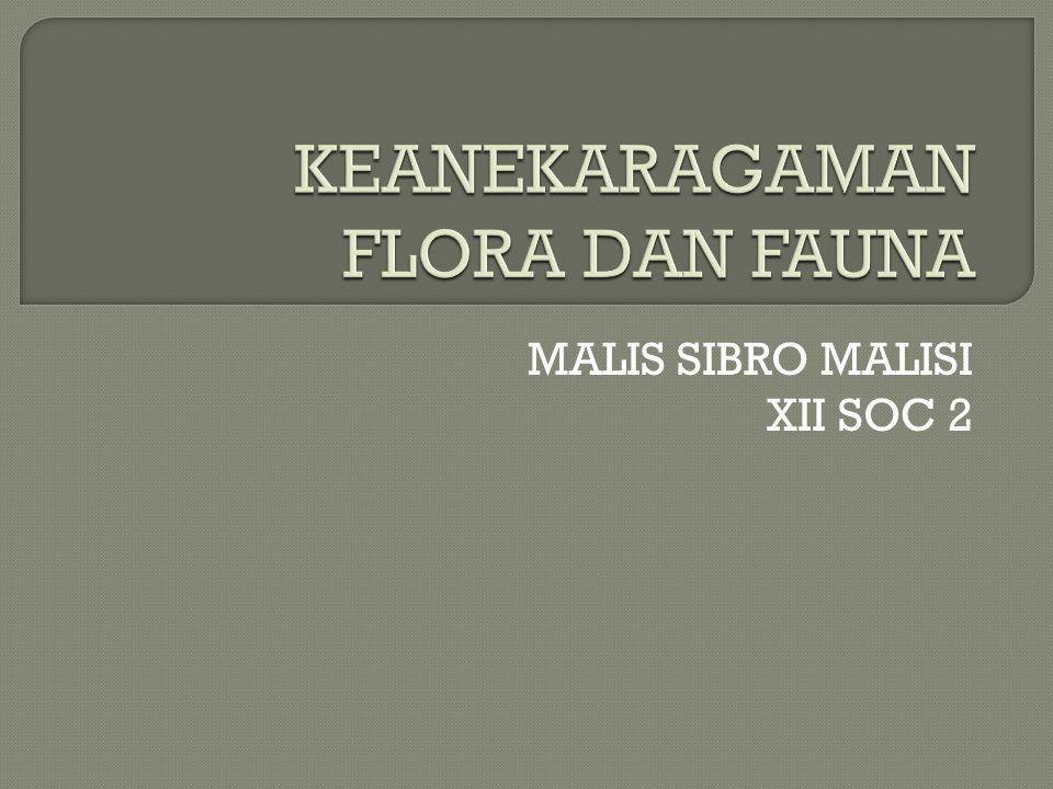 KEANEKARAGAMAN FLORA DAN FAUNA