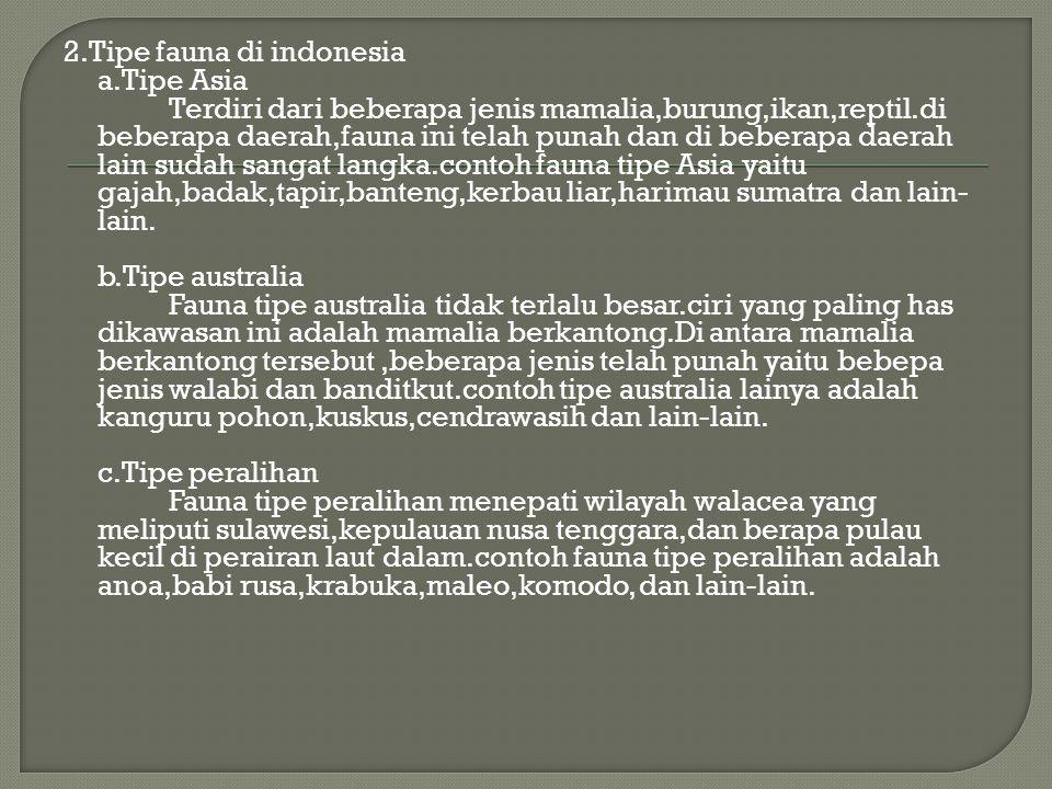 2. Tipe fauna di indonesia a