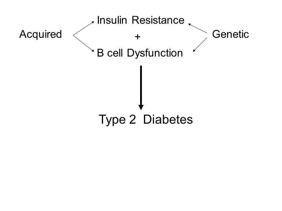 Type 2 Diabetes Insulin Resistance Acquired Genetic +
