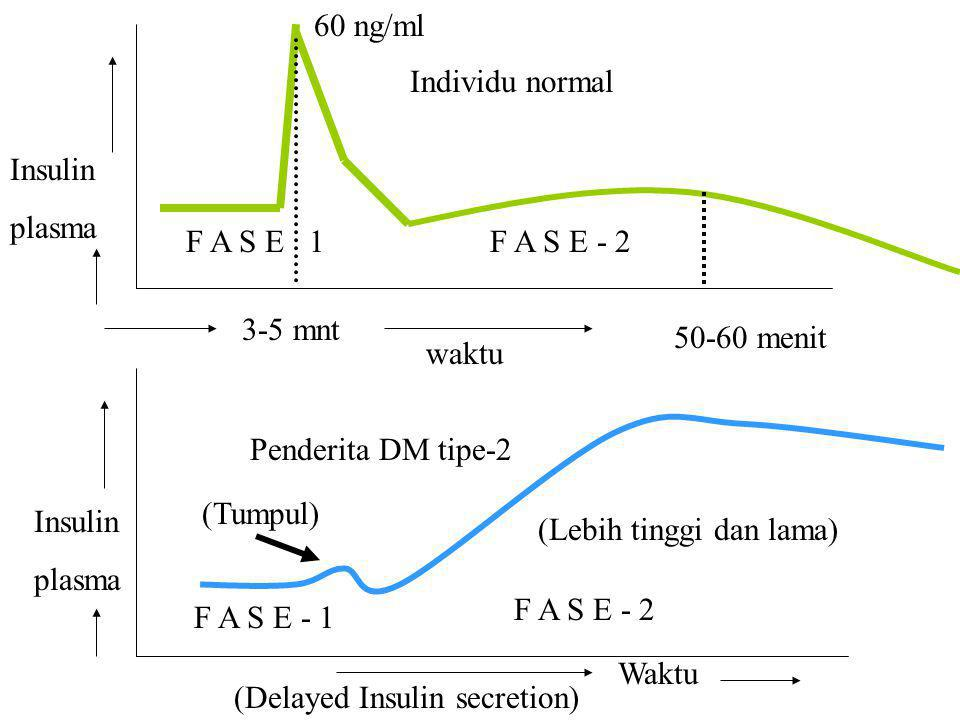 60 ng/ml Individu normal. Insulin. plasma. F A S E 1. F A S E - 2. 3-5 mnt. 50-60 menit. waktu.