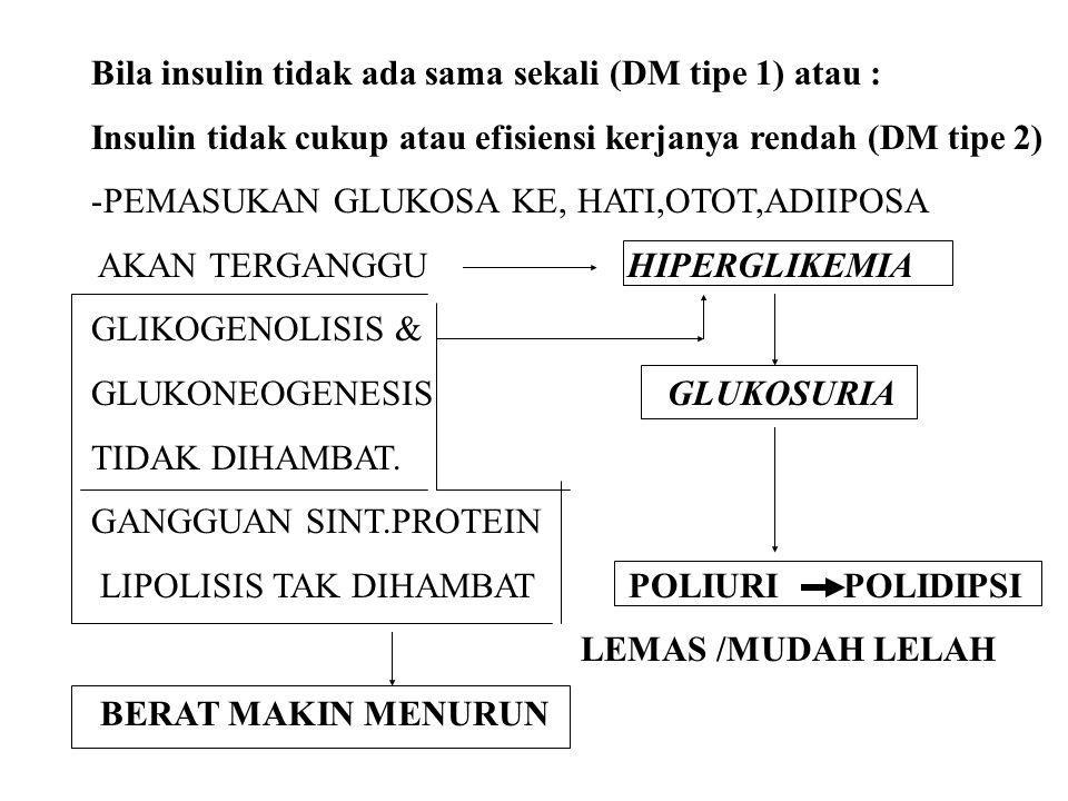 Bila insulin tidak ada sama sekali (DM tipe 1) atau :