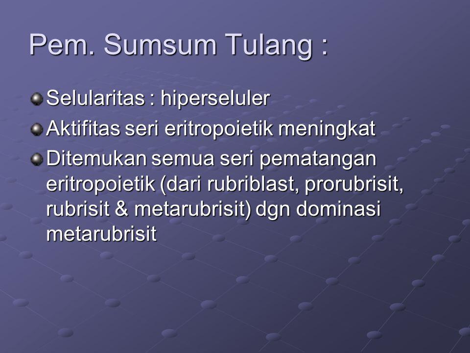 Pem. Sumsum Tulang : Selularitas : hiperseluler