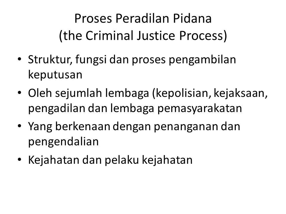 Proses Peradilan Pidana (the Criminal Justice Process)