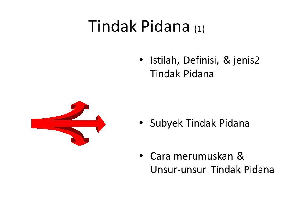 Tindak Pidana (1) Istilah, Definisi, & jenis2 Tindak Pidana