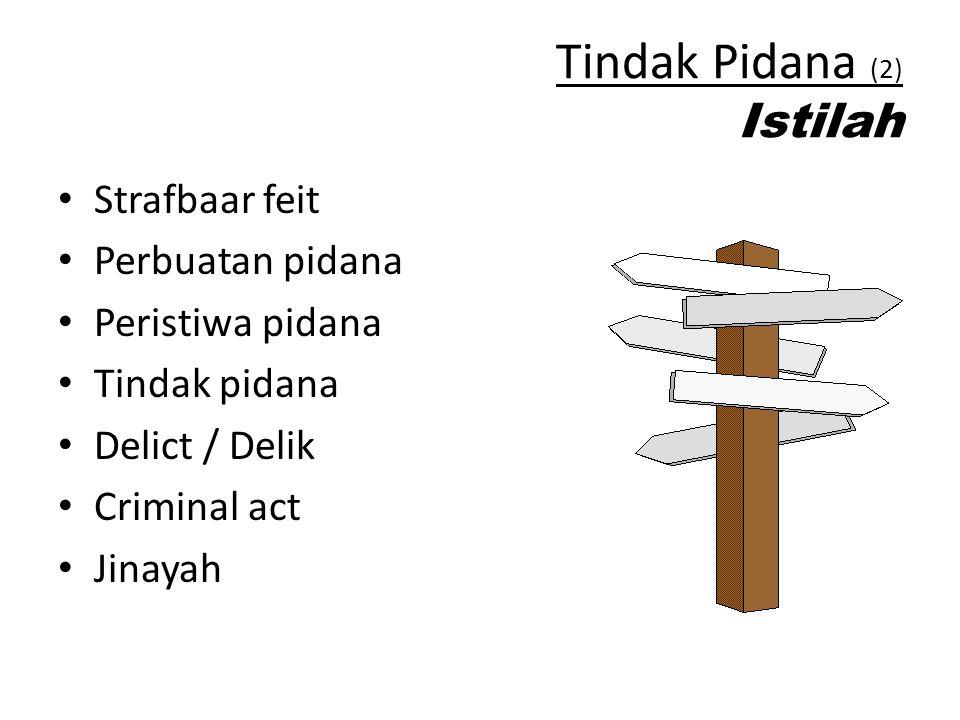 Tindak Pidana (2) Istilah