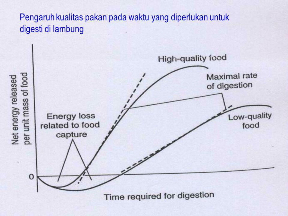 Pengaruh kualitas pakan pada waktu yang diperlukan untuk digesti di lambung