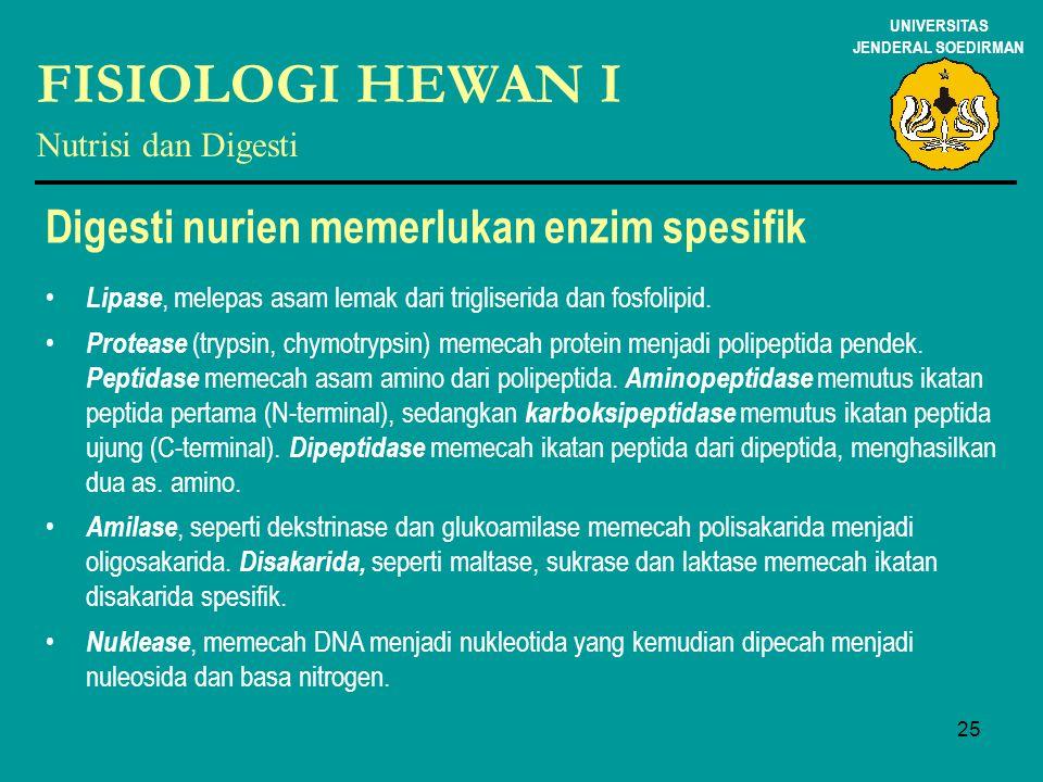 FISIOLOGI HEWAN I Digesti nurien memerlukan enzim spesifik