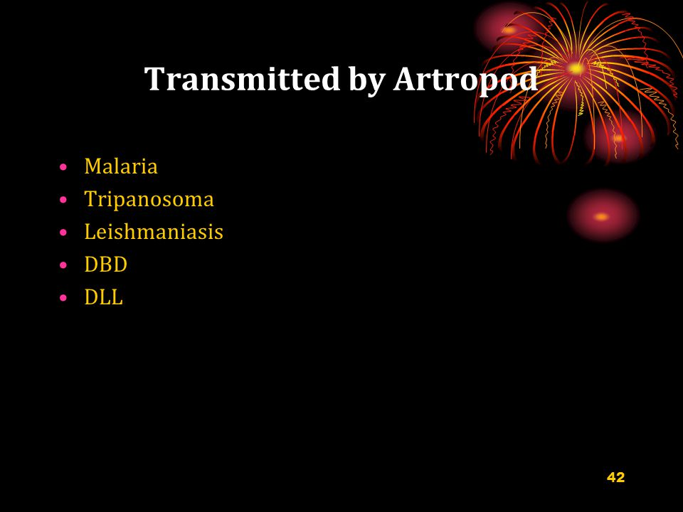 Transmitted by Artropod