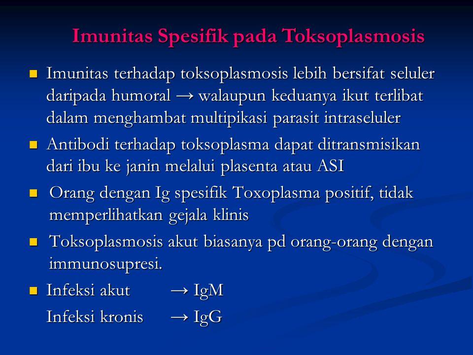 Imunitas Spesifik pada Toksoplasmosis