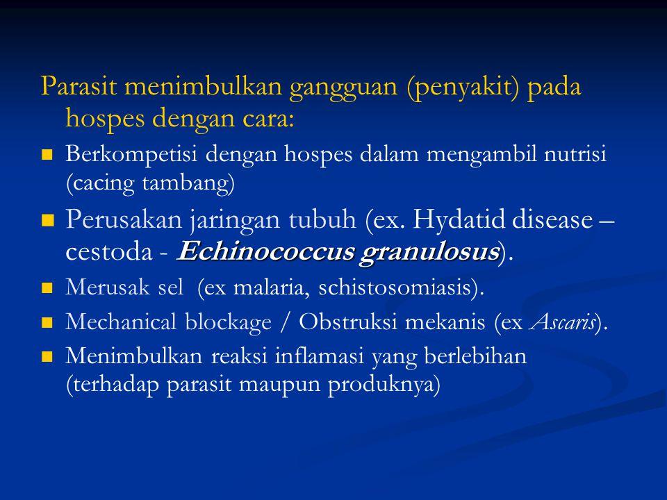 Parasit menimbulkan gangguan (penyakit) pada hospes dengan cara: