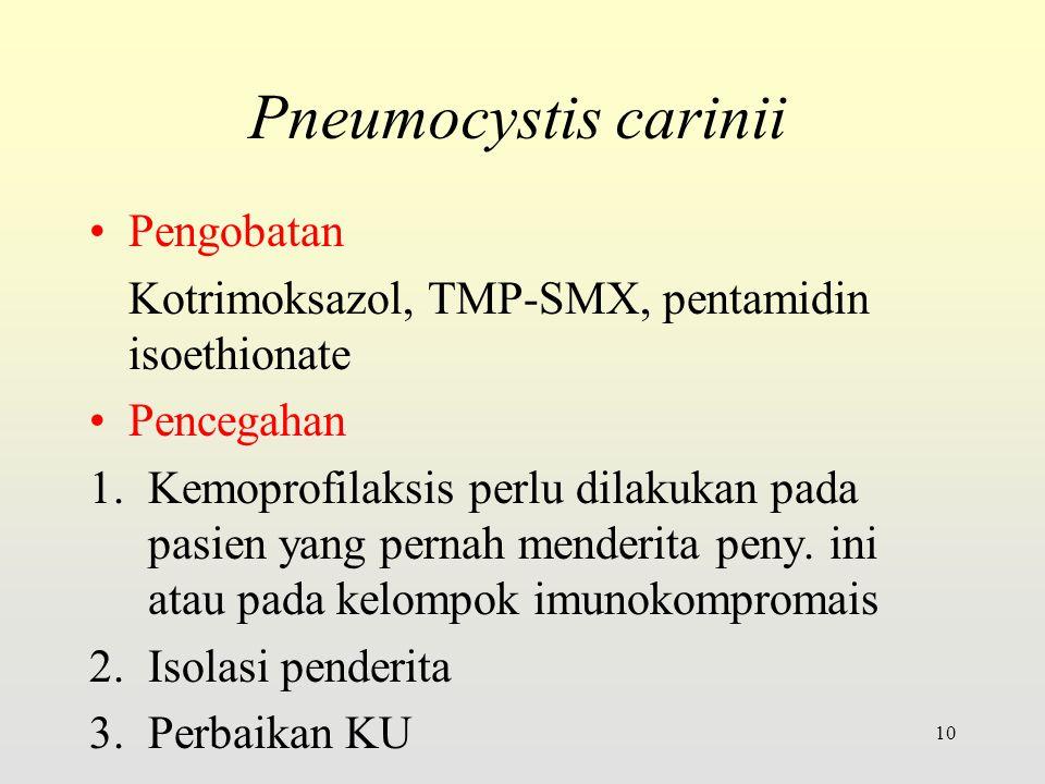 Pneumocystis carinii Pengobatan