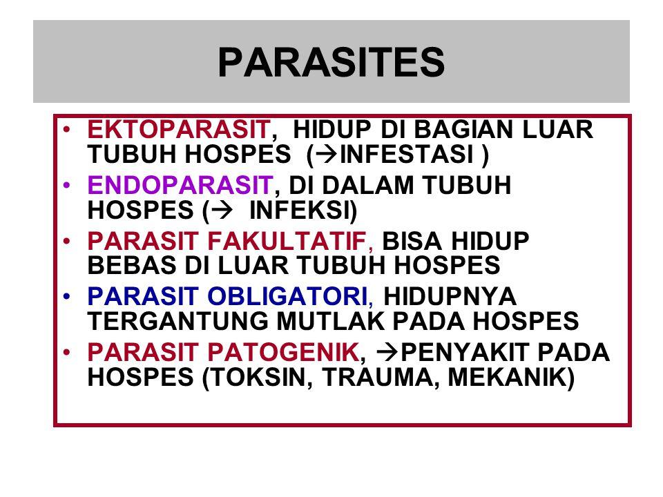 PARASITES EKTOPARASIT, HIDUP DI BAGIAN LUAR TUBUH HOSPES (INFESTASI )