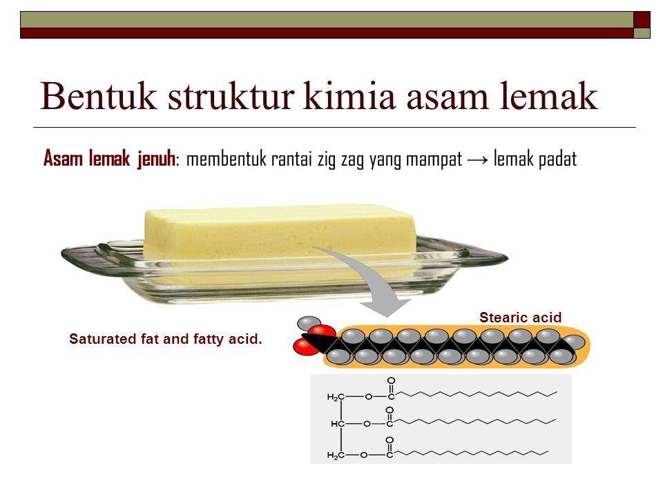 Bentuk struktur kimia asam lemak