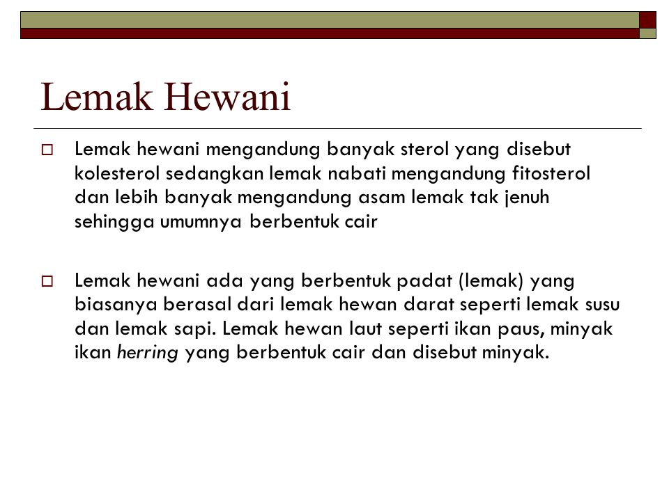 Lemak Hewani