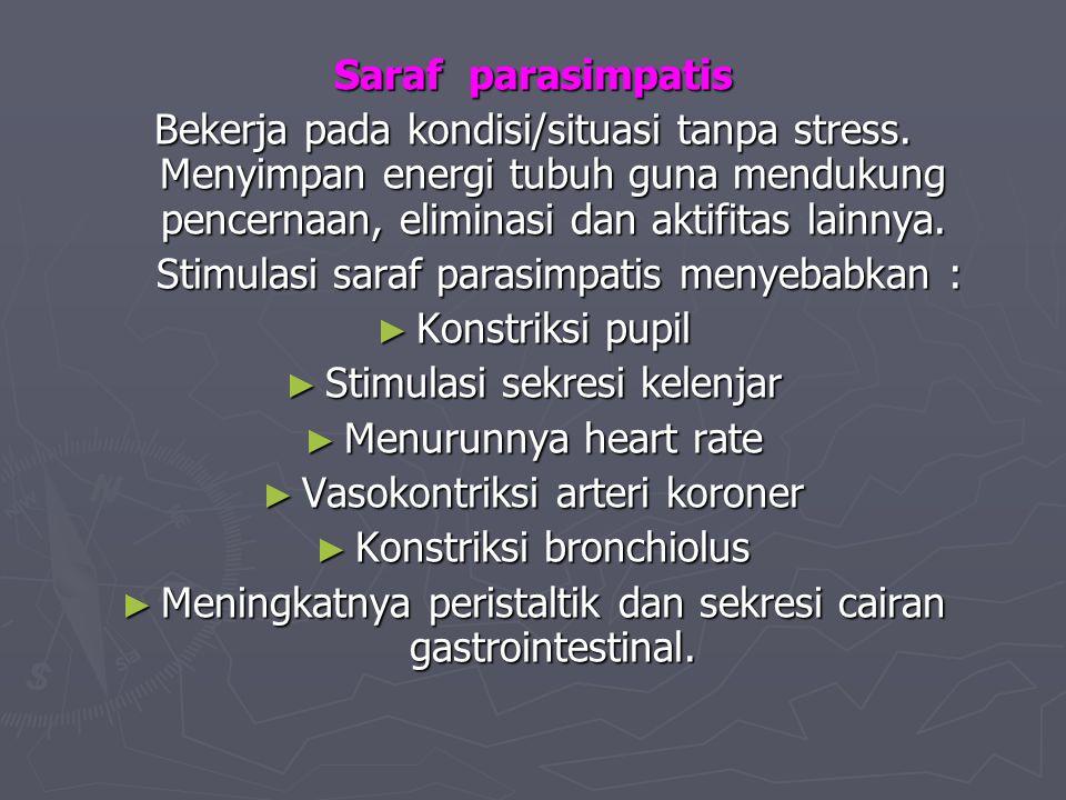 Stimulasi saraf parasimpatis menyebabkan : Konstriksi pupil