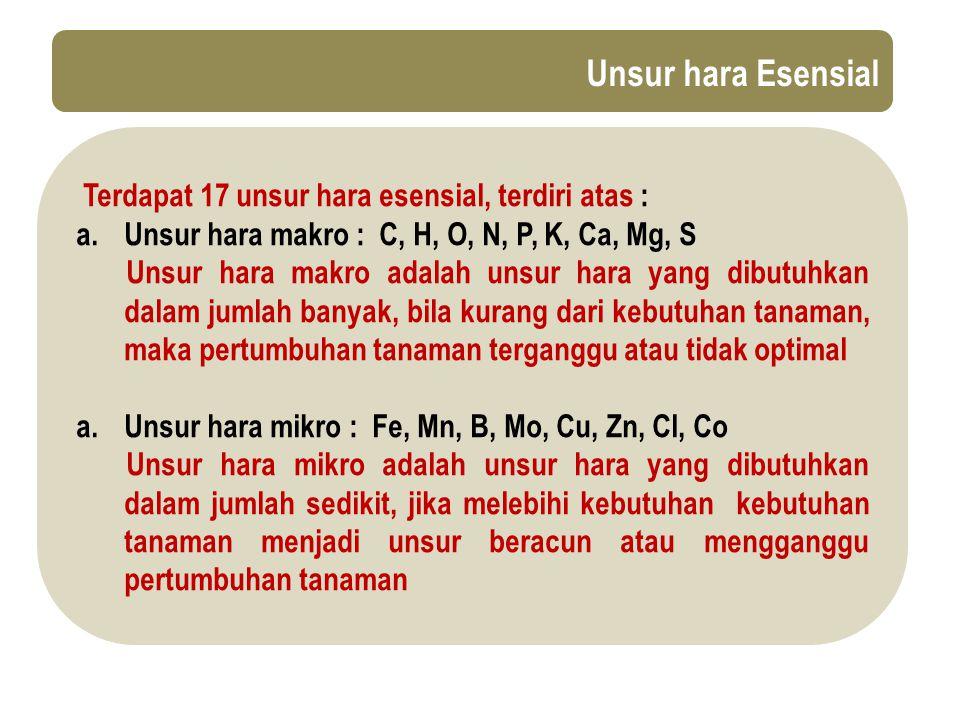 Unsur hara Esensial Terdapat 17 unsur hara esensial, terdiri atas :