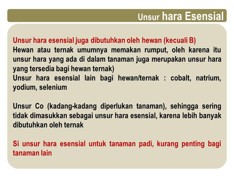 Unsur hara Esensial Unsur hara esensial juga dibutuhkan oleh hewan (kecuali B)