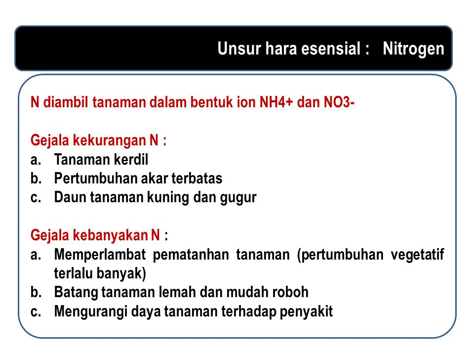 Unsur hara esensial : Nitrogen