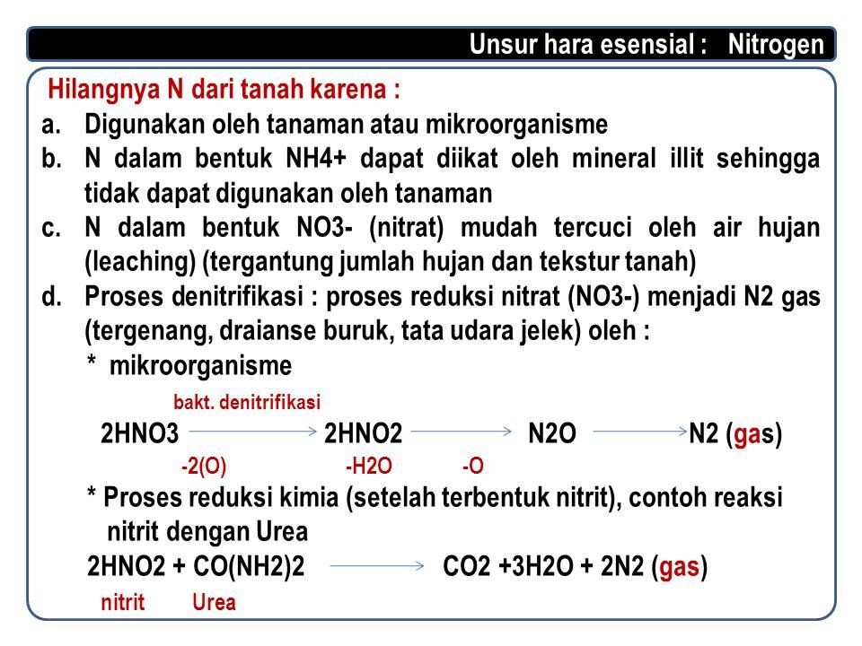 Unsur hara esensial : Nitrogen Hilangnya N dari tanah karena :