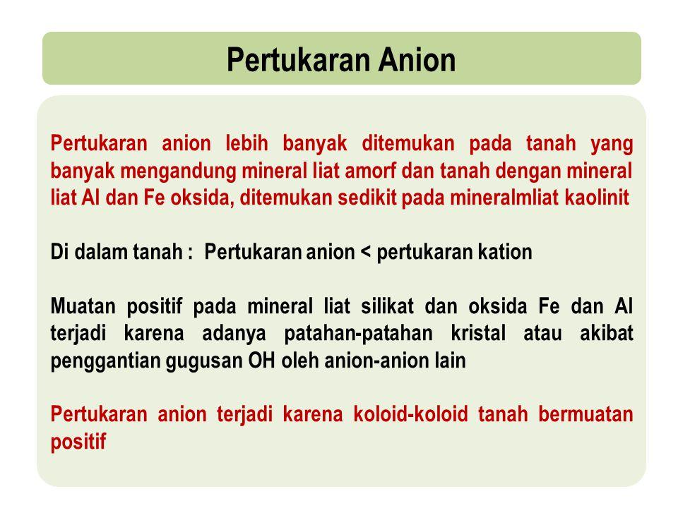 Pertukaran Anion