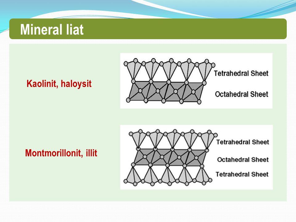 Mineral liat Kaolinit, haloysit Montmorillonit, illit