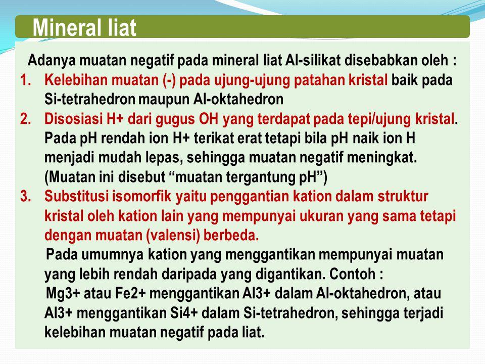 Adanya muatan negatif pada mineral liat Al-silikat disebabkan oleh :
