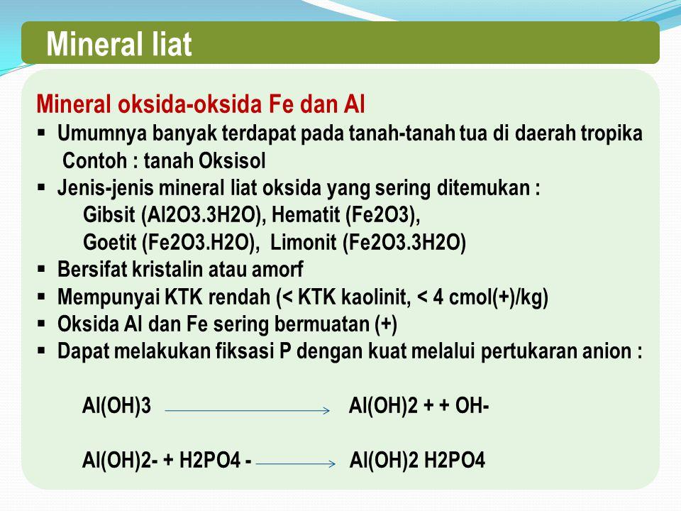 Mineral liat Mineral oksida-oksida Fe dan Al