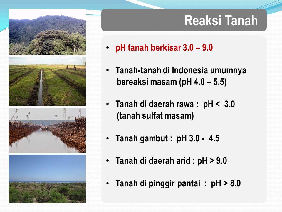 Reaksi Tanah pH tanah berkisar 3.0 – 9.0