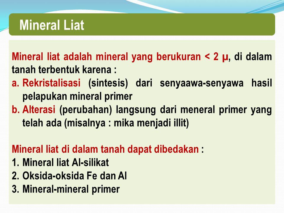 Mineral Liat Mineral liat adalah mineral yang berukuran < 2 µ, di dalam tanah terbentuk karena :