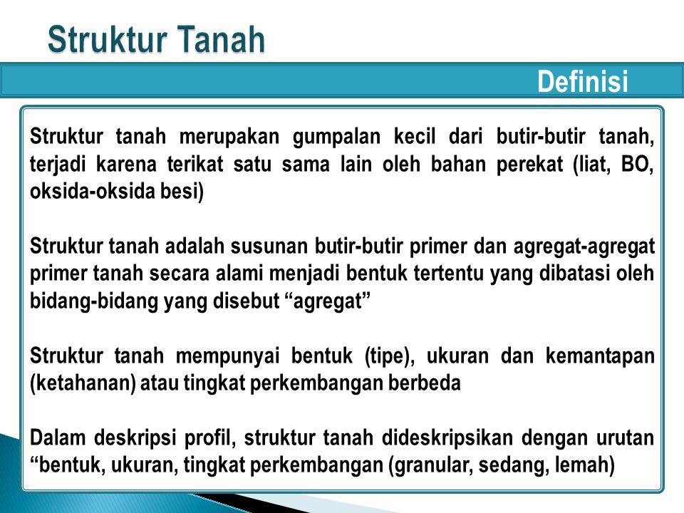 Struktur Tanah Definisi