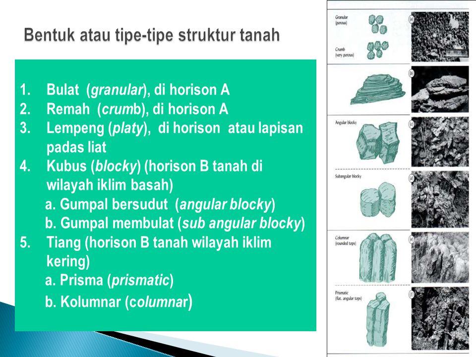 Bentuk atau tipe-tipe struktur tanah