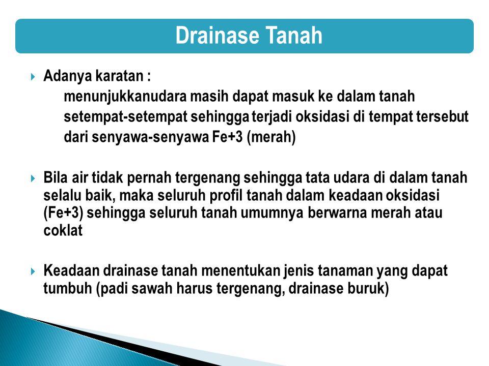 Drainase Tanah Adanya karatan :
