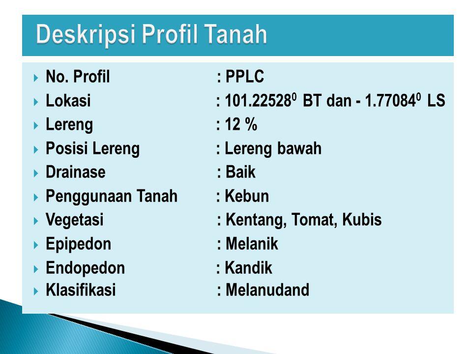 Deskripsi Profil Tanah