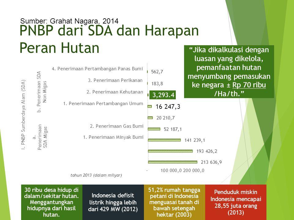 PNBP dari SDA dan Harapan Peran Hutan