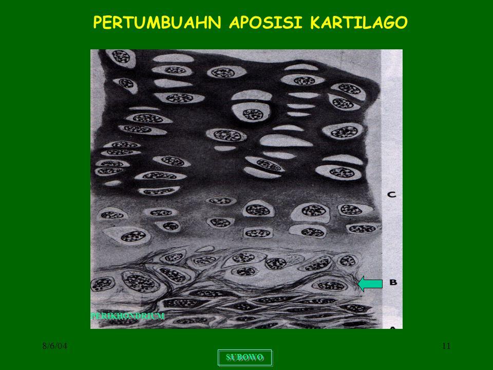 PERTUMBUAHN APOSISI KARTILAGO