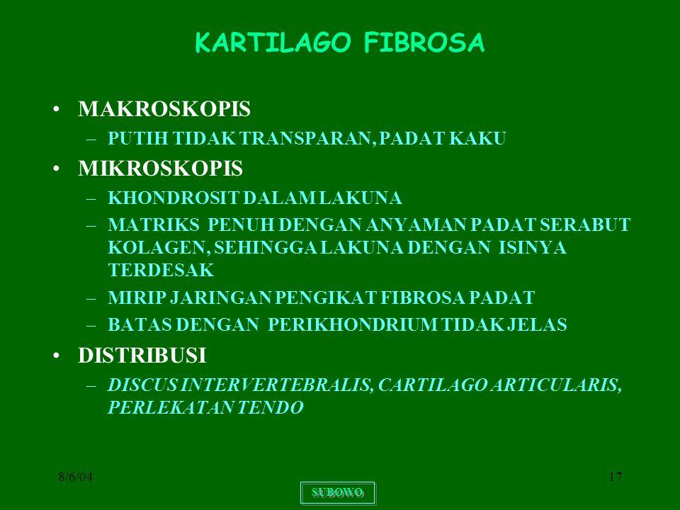 KARTILAGO FIBROSA MAKROSKOPIS MIKROSKOPIS DISTRIBUSI