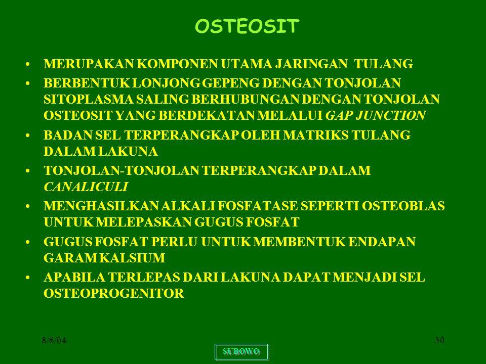 OSTEOSIT MERUPAKAN KOMPONEN UTAMA JARINGAN TULANG