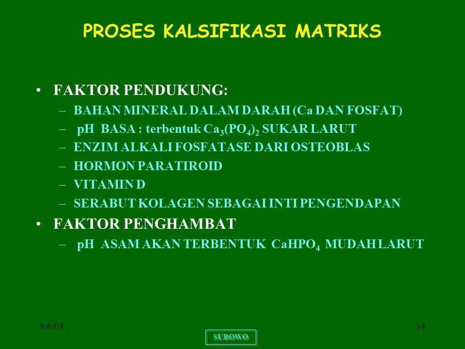 PROSES KALSIFIKASI MATRIKS