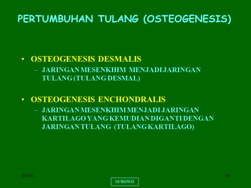PERTUMBUHAN TULANG (OSTEOGENESIS)