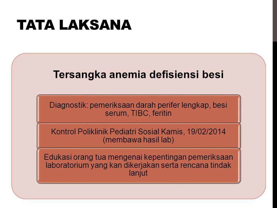 Tersangka anemia defisiensi besi