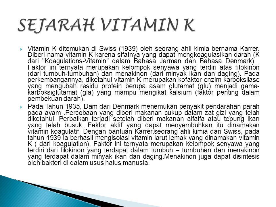 SEJARAH VITAMIN K