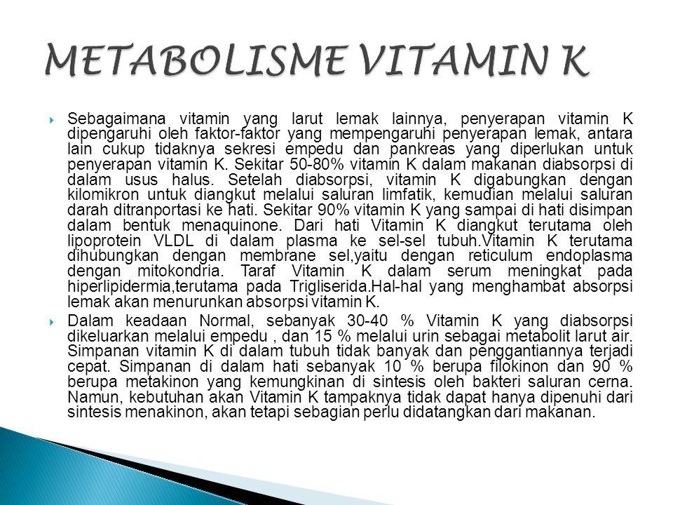 METABOLISME VITAMIN K