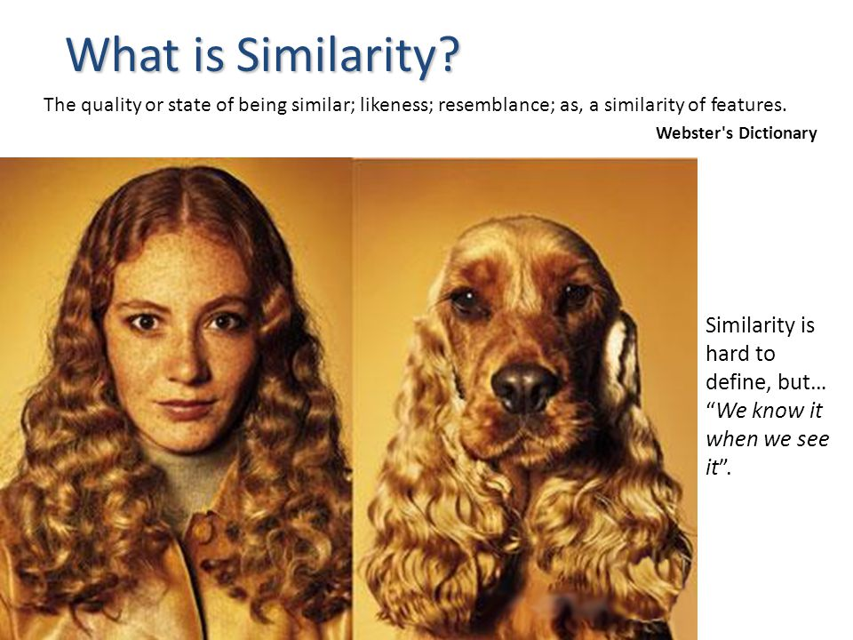 What is Similarity Similarity is hard to define, but…